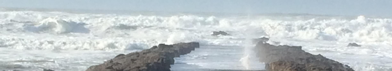 Notre équipe, la mer et les vague contre la jetée